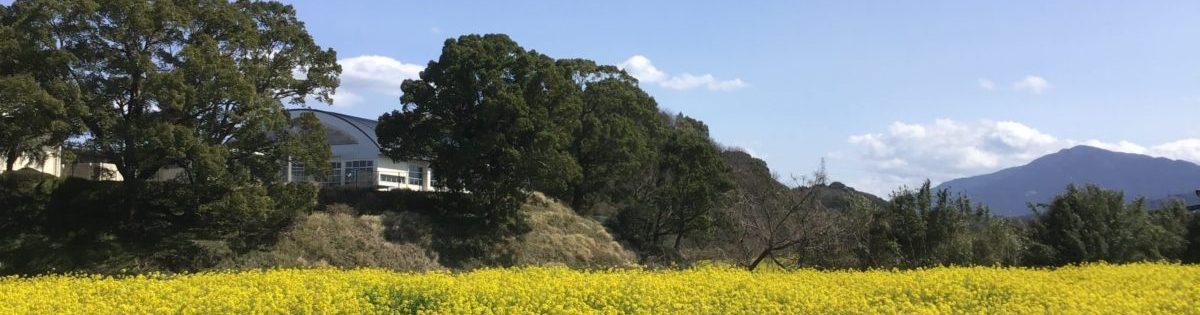 2020年3月 碓井小学校体育館横の菜の花畑